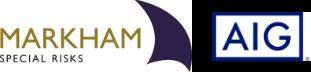 MSR AIG Logo